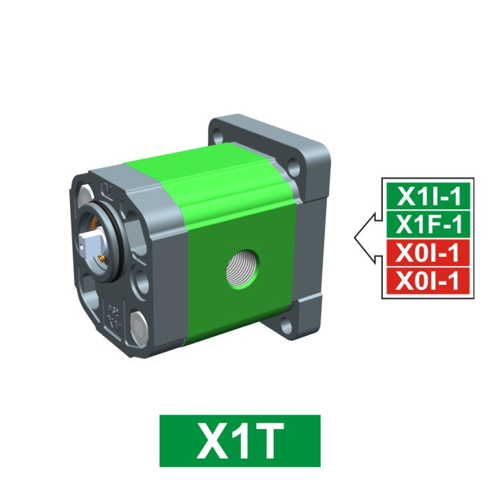 Elemento di Pompa Multipla xt119 del Gruppo 1 di Vivolo Vivoil Oleodinamica