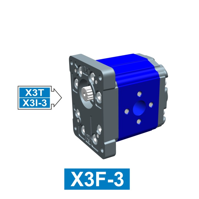 Elemento di Pompa Multipla xf301 del Gruppo 3 di Vivolo Vivoil Oleodinamica