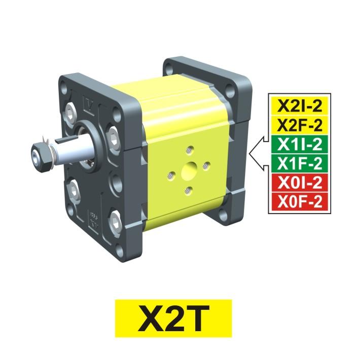 Elemento di Pompa Multipla xt201 del Gruppo 2 di Vivolo Vivoil Oleodinamica