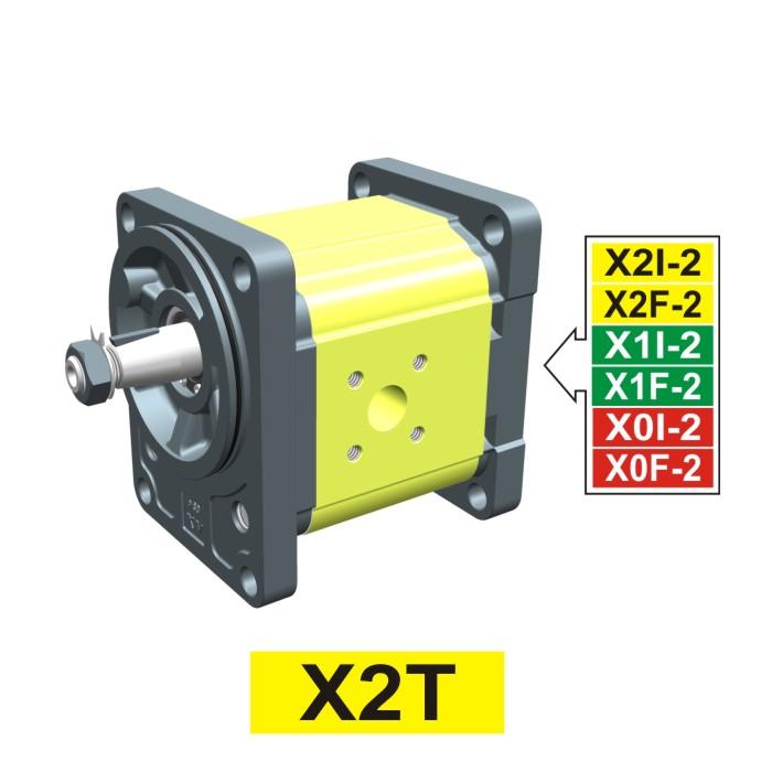 Elemento di Pompa Multipla xt217 del Gruppo 2 di Vivolo Vivoil Oleodinamica