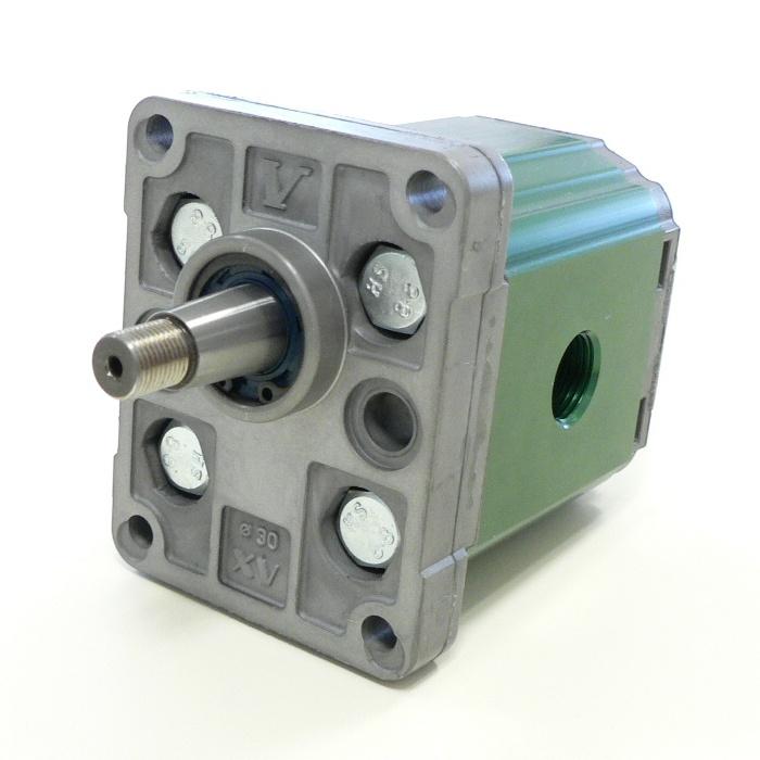 Motore Unidirezionale xu113 del Gruppo 1 di Vivolo Vivoil Oleodinamica